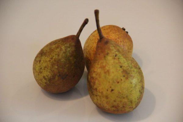La poire de Fizet