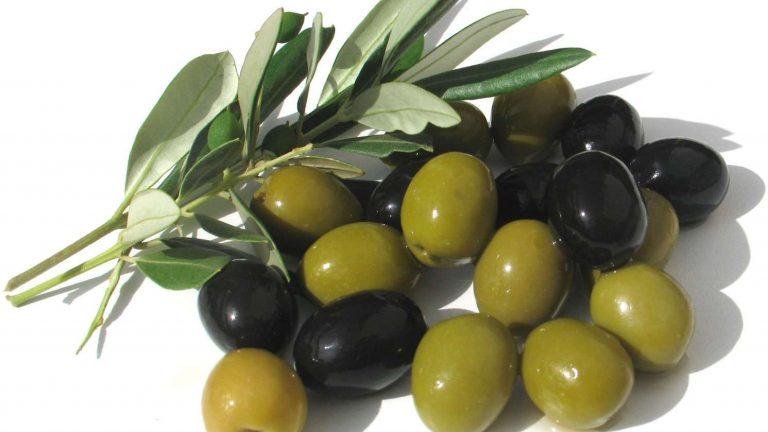 Olive pour la tapenade