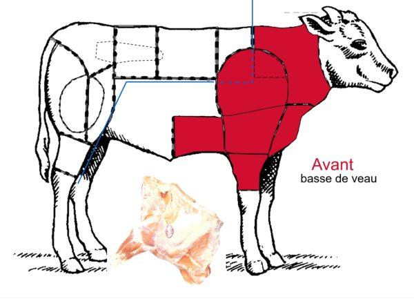 Le veau – Les différentes découpes de la basse de veau