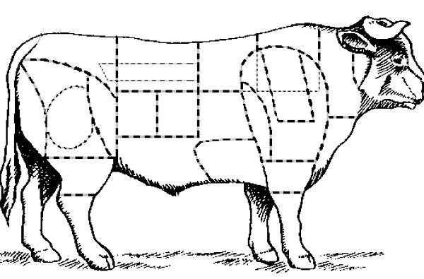 La viande bovine – Généralités 01