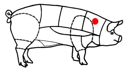 La pluma de cochon